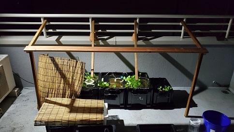 メダカの屋根をDIY、暑さも雨も安心